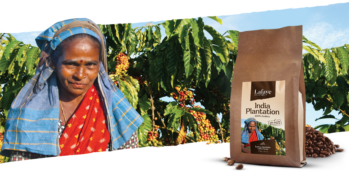 Kawa z Indii producent - INDIA PLANTATION